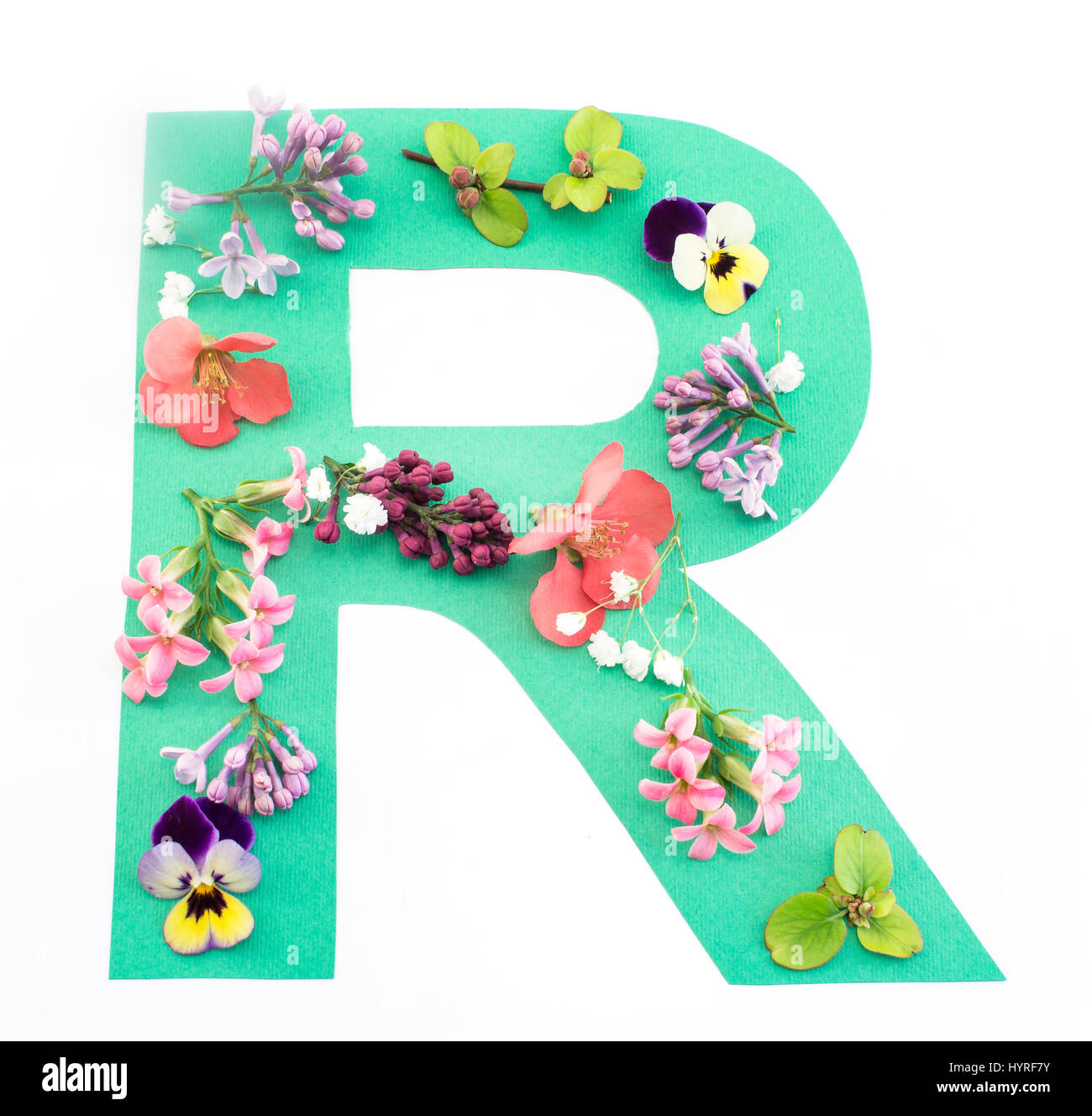 letter r made of spring flowers and paper on white background stock
