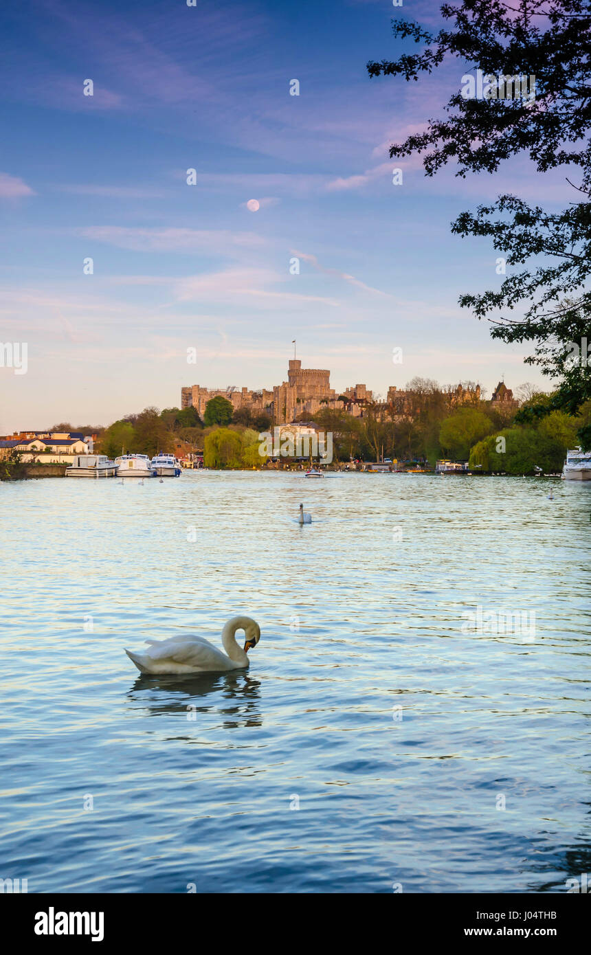 a-view-down-the-river-thames-towards-windsor-castle-in-the-evening-J04THB.jpg