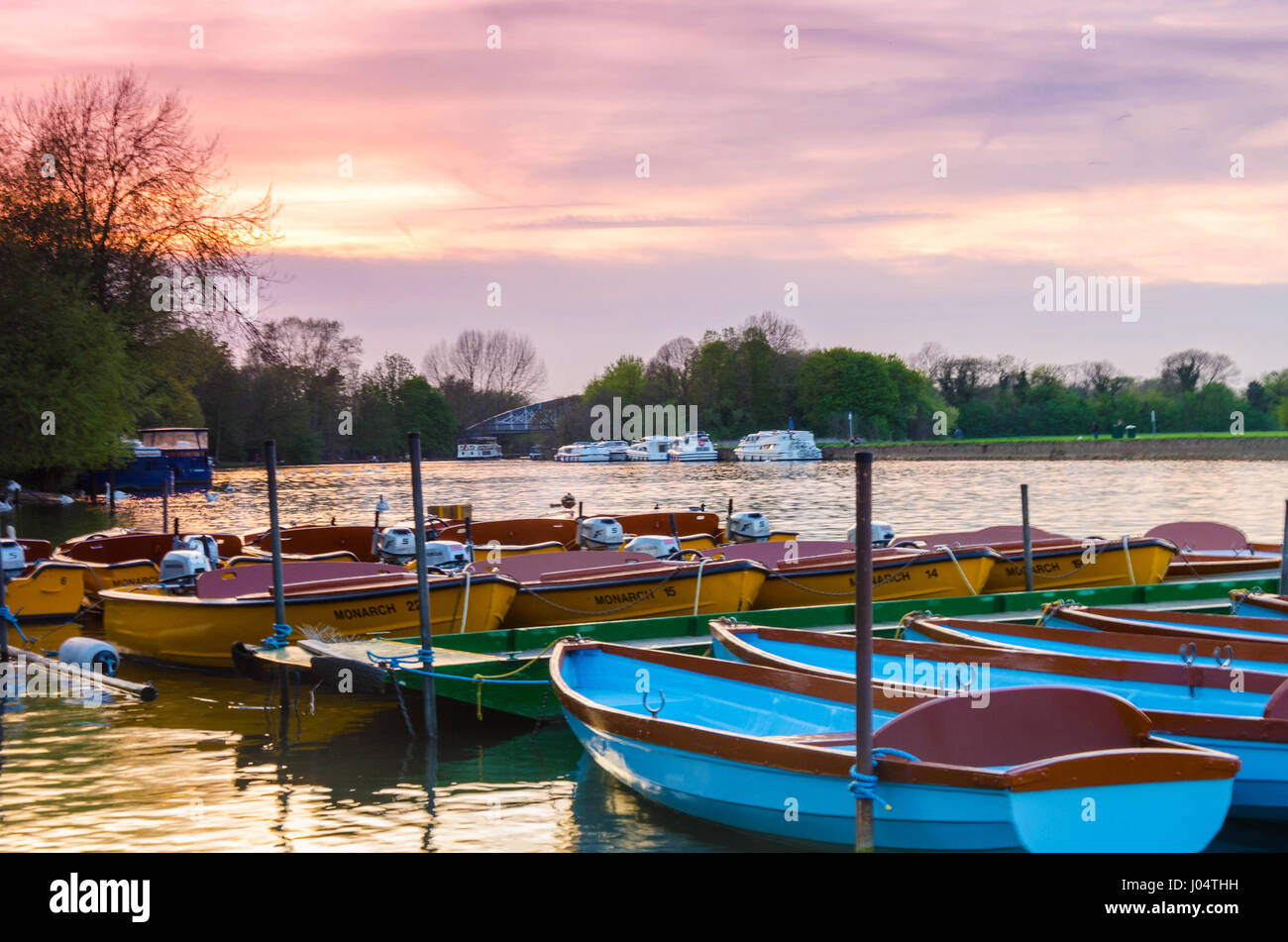 looking-down-the-river-thames-at-hire-boats-moored-to-the-side-of-J04THH.jpg