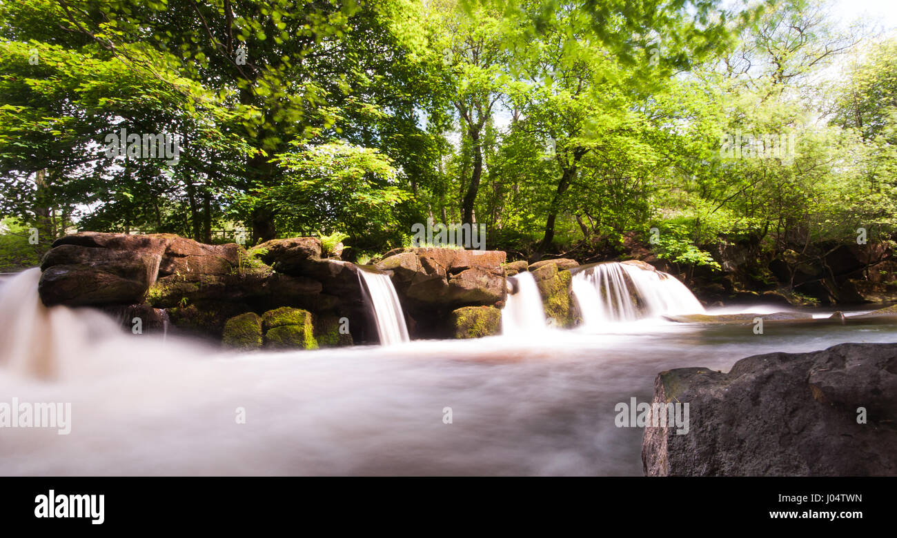 The River Derwent tumbles over waterfalls in woodland near Bamford in the Upper Derwent Valley in Derbyshire's - Stock Image
