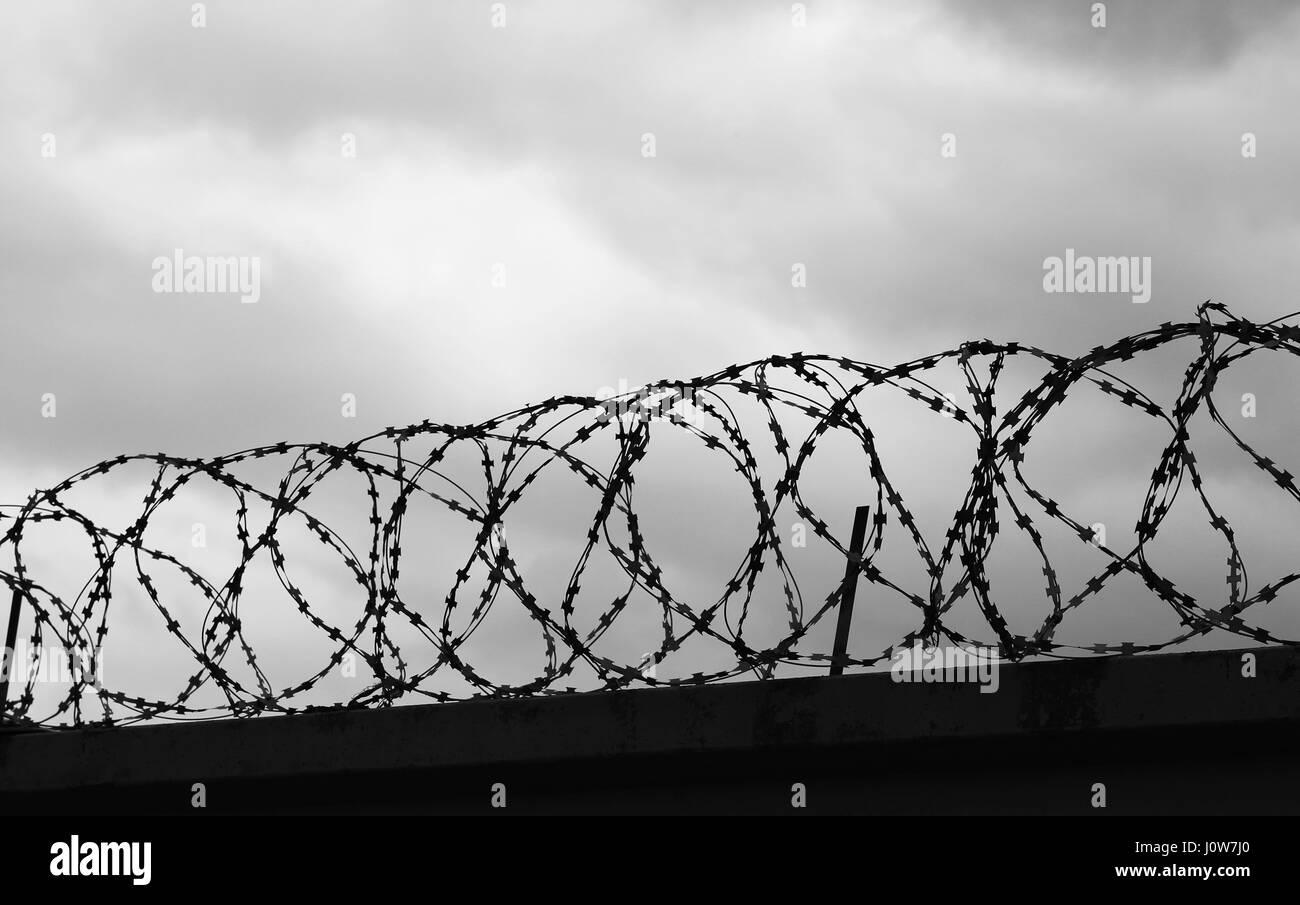 Erfreut Barbed Wire Band Greenville Ideen - Elektrische Schaltplan ...