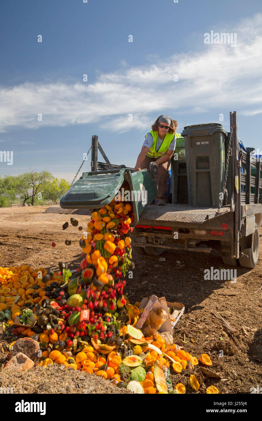 Tucson, Arizona - The Compost Cats, a University of Arizona student organization, composts food waste from the city Stock Photo