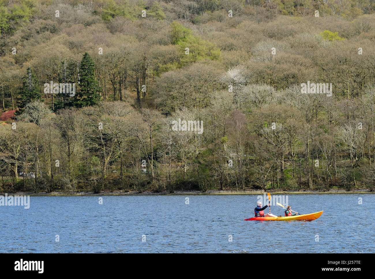 Father and son canoeing on Lake Coniston, Cumbria - Stock Image
