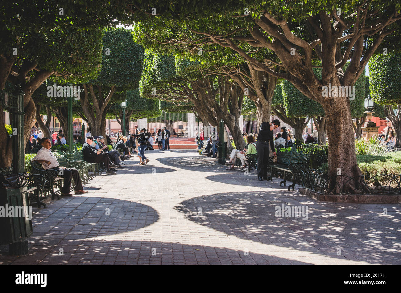 El Jardin, San Miguel de Allende - Stock Image