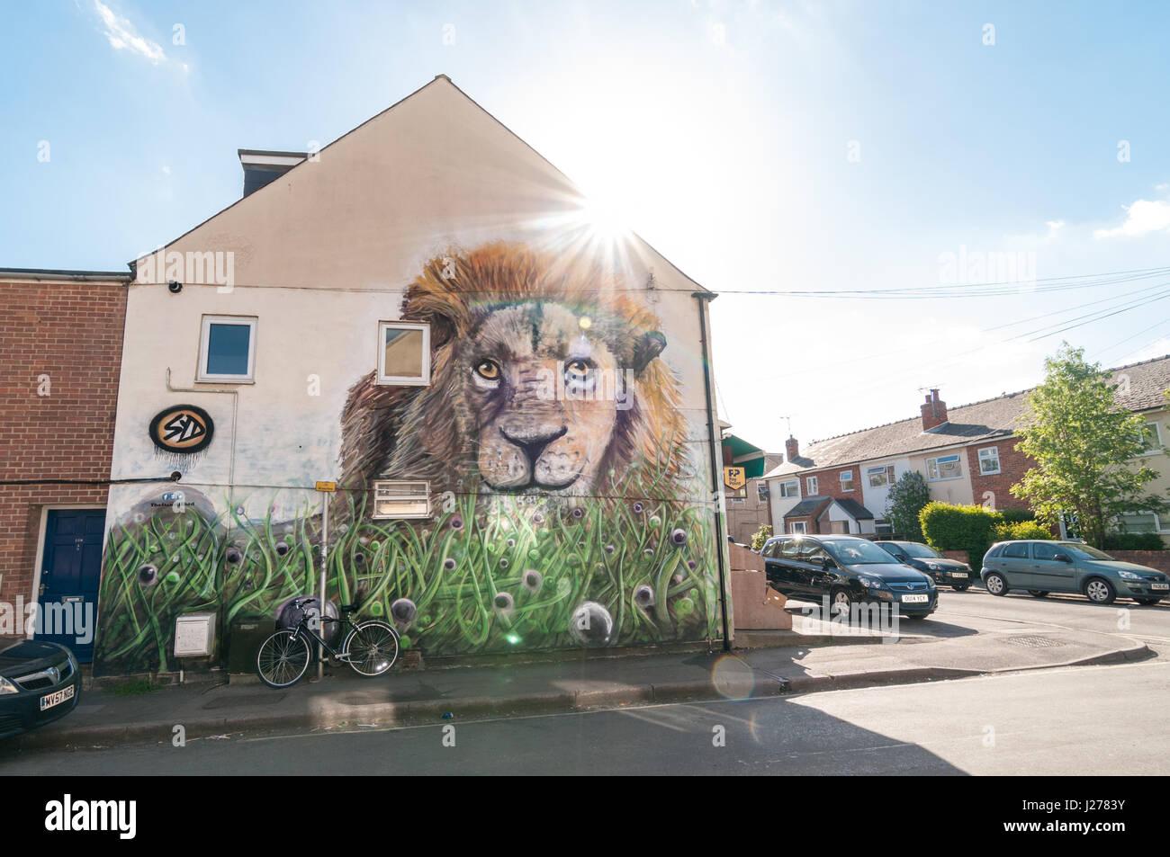 lion-mural-on-wall-in-east-oxford-united-kingdom-J2783Y.jpg