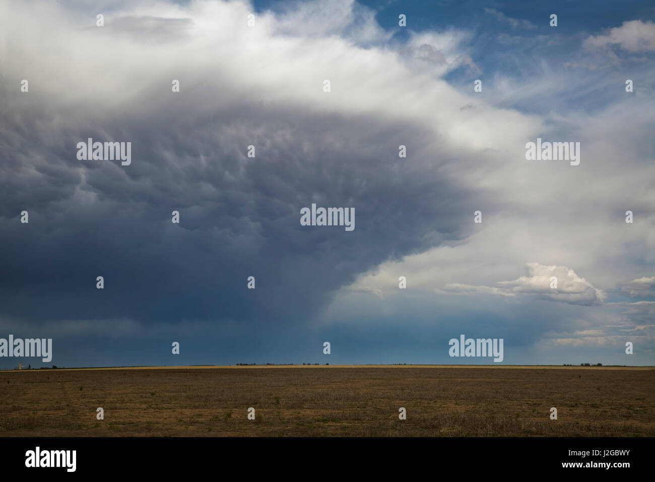 USA, Kansas. Storm cell forms over prairie. Credit as: Don Grall / Jaynes Gallery / DanitaDelimont.com - Stock Image