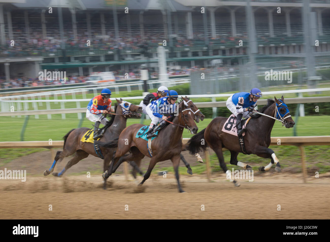 USA, Kentucky, Louisville. Horses racing at Churchill Downs. Credit as: Don Grall / Jaynes Gallery / DanitaDelimont.com - Stock Image