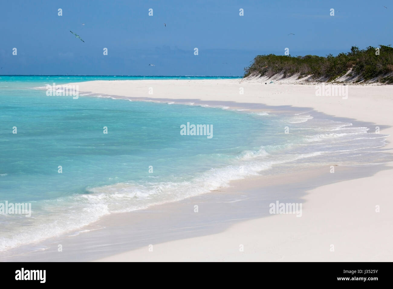 Midway Atoll island and lagoon in Papahanaumokuakea Marine National Monument - Stock Image