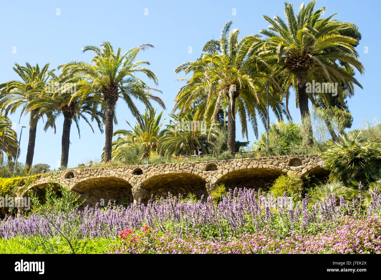 landscaped-garden-viaduct-and-palm-trees-in-antoni-gaudis-park-gell-J7EK2X.jpg