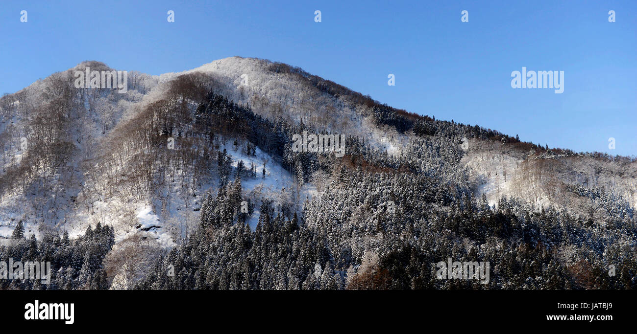 Beautiful Wintry landscapes in Aomori prefecture, Japan. - Stock Image