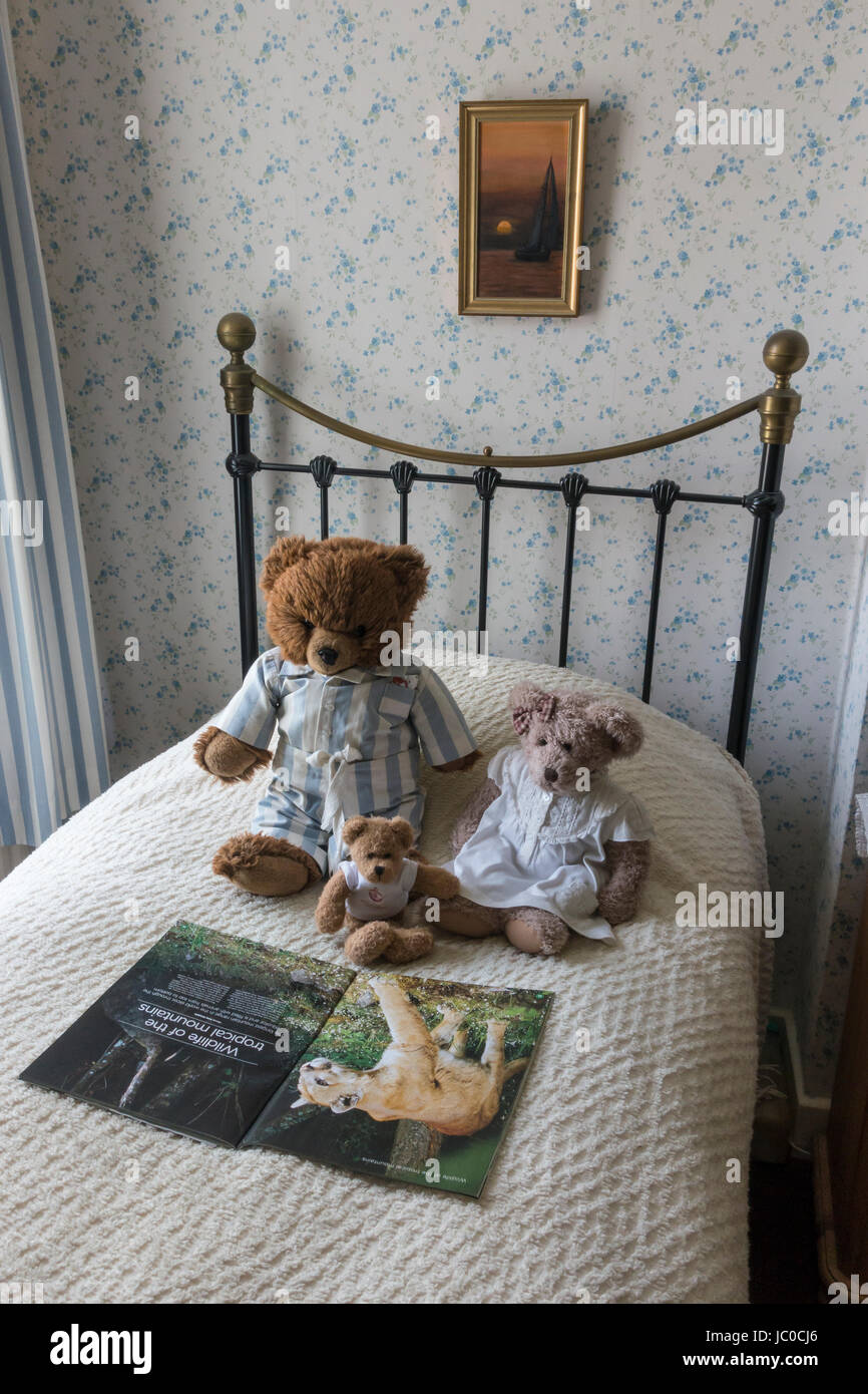 teddy-bears-reading-wildlife-magazine-on-bed-JC0CJ6.jpg