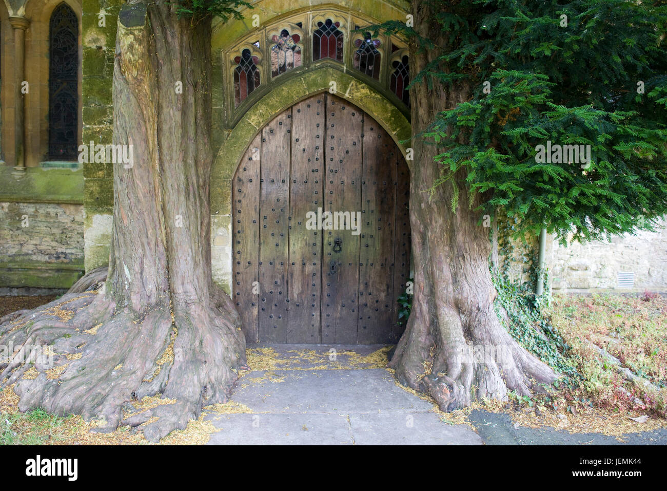 Yew trees flanking door in the north porch of St Edwards parish church in Stow on the WoldStock Photo