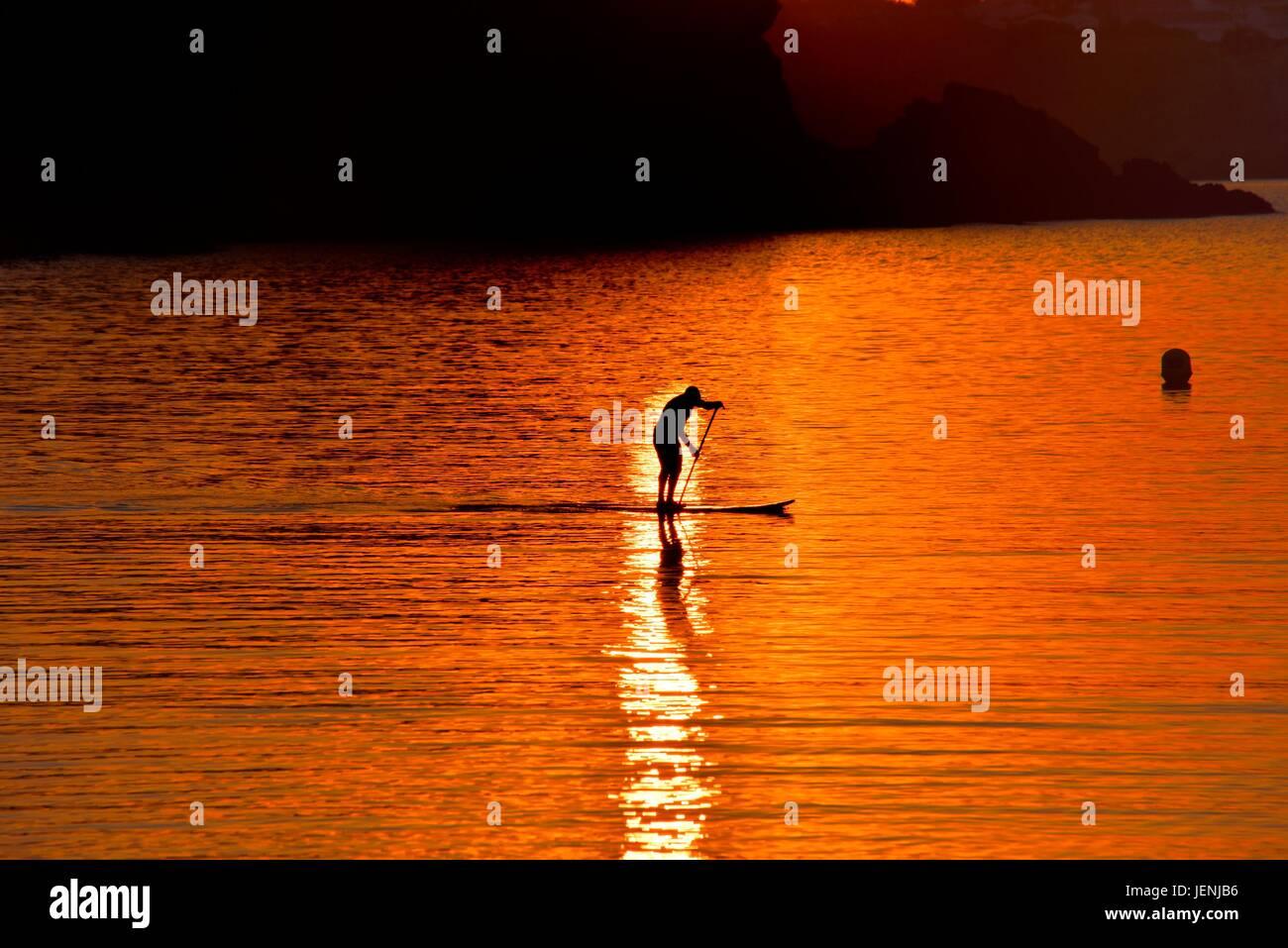 paddle-boarding-JENJB6.jpg