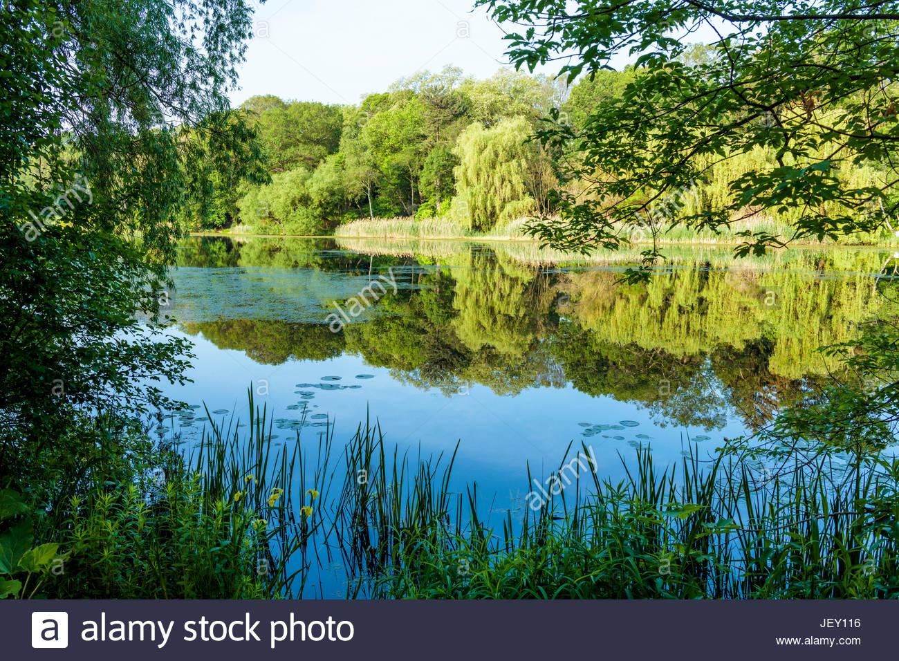 grenadier-pond-in-high-park-in-toronto-o