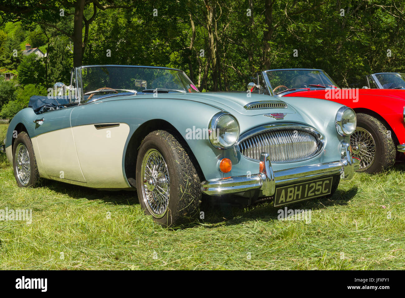 Austin Healey 3000 Mark 3 an iconic classic British sports car built from 1959 to 1967 at a vintage vehicle rally Stock Photo