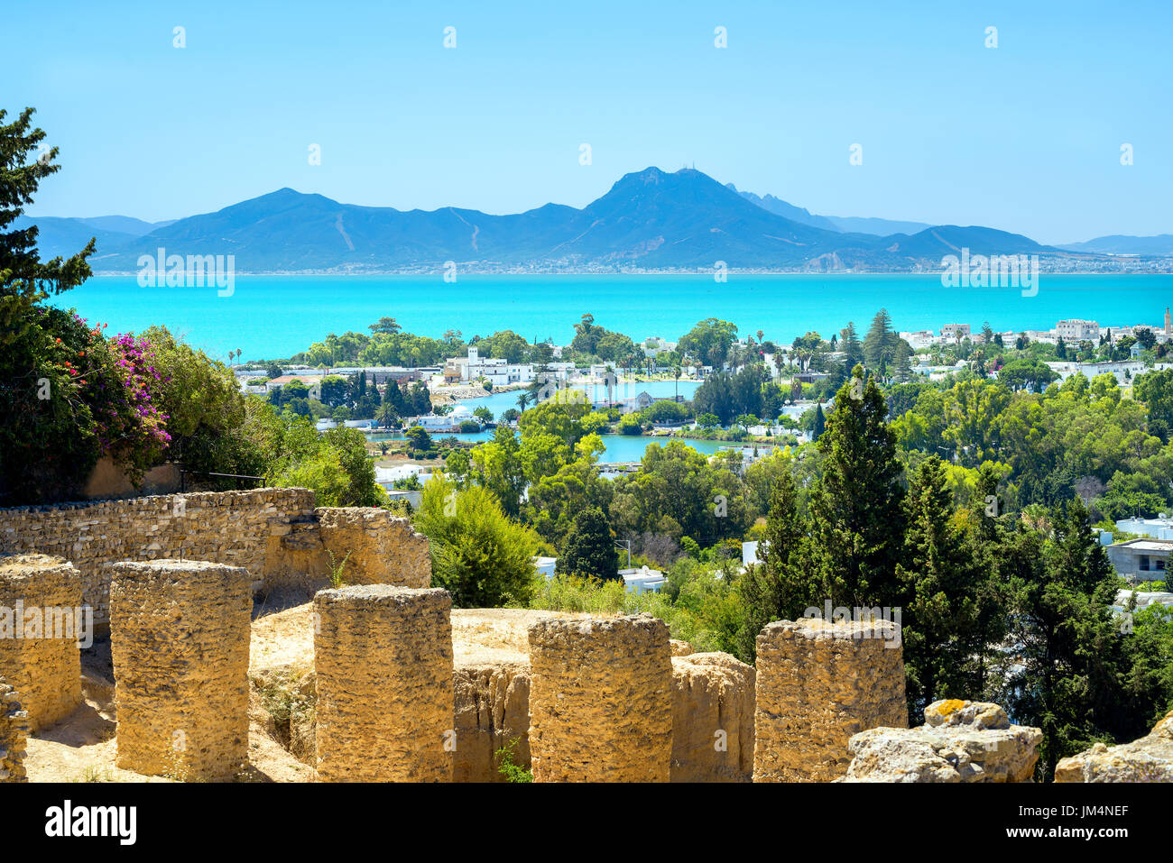 Landscape with ancient ruins of Carthage. Tunis, Tunisia, Africa - Stock Image