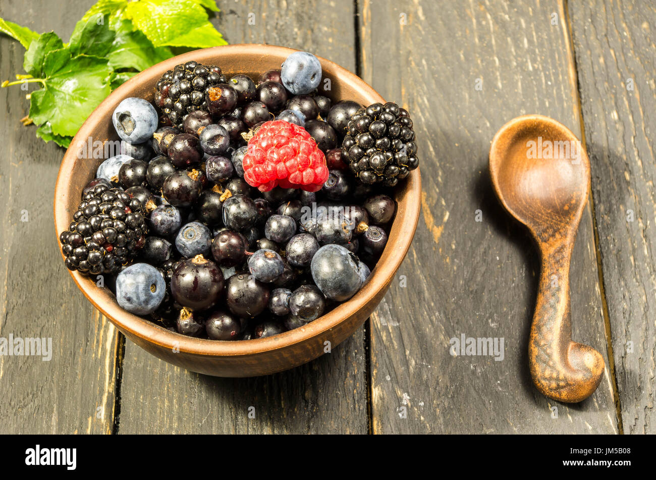 Fresh forest berries with a green leaf. Not like everyone else. - Stock Image