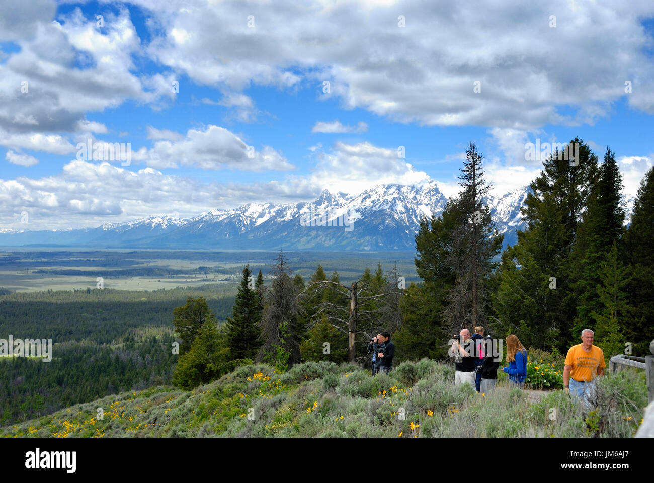 Valley view from Jackson Lake Overlook, Grand Tetons National Park, Wyoming, USA Stock Photo