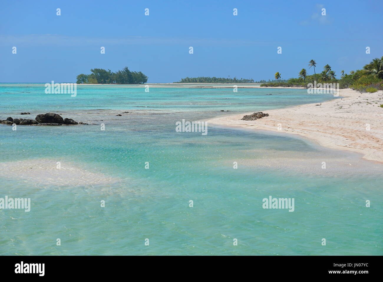 The inner lagoon and seashore of the atoll of Tikehau, Tuamotus archipelago, French Polynesia, south Pacific ocean - Stock Image
