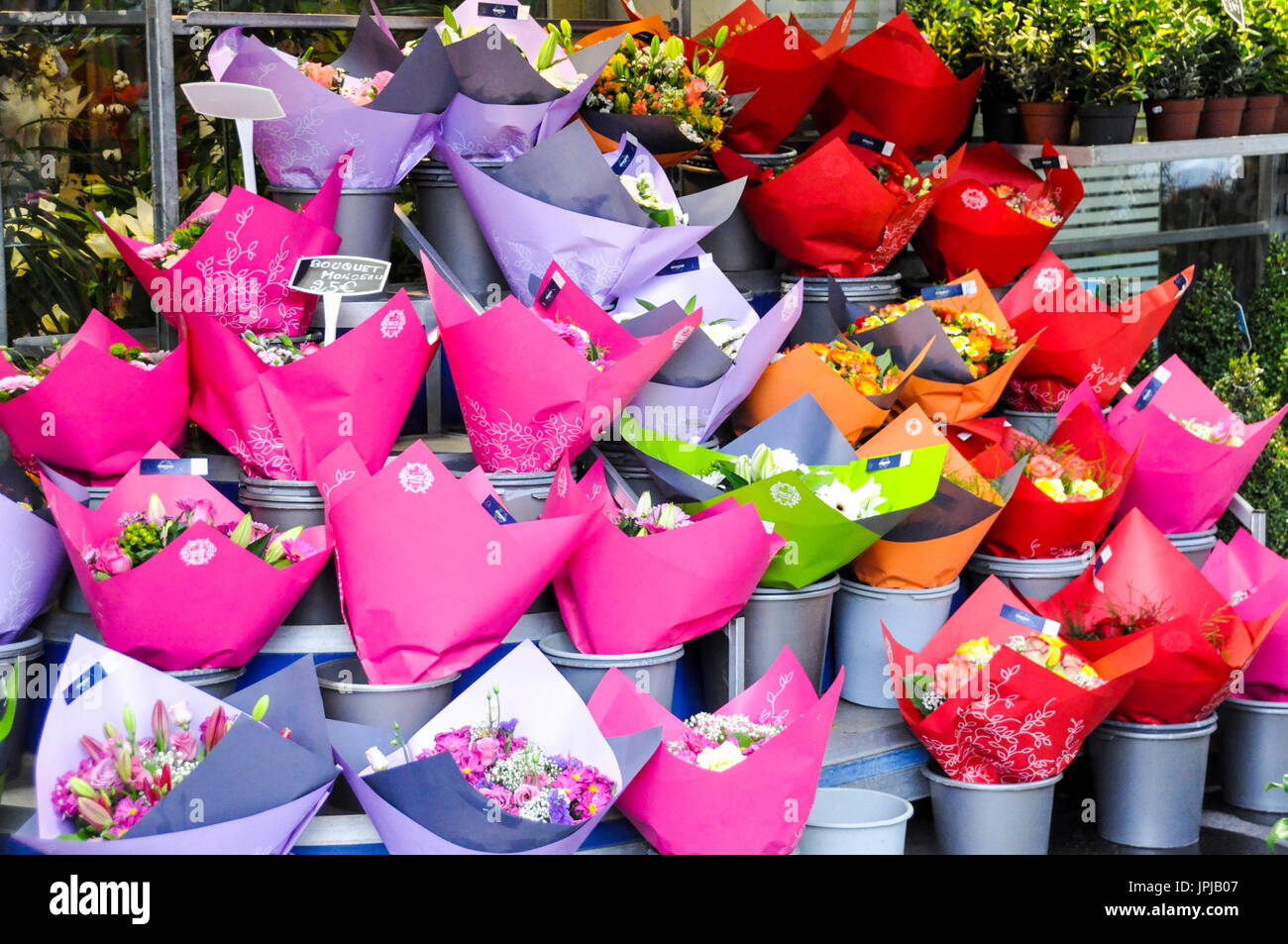 display-of-flowers-wrapped-in-colourful-paper-in-front-of-a-florist-JPJB07.jpg