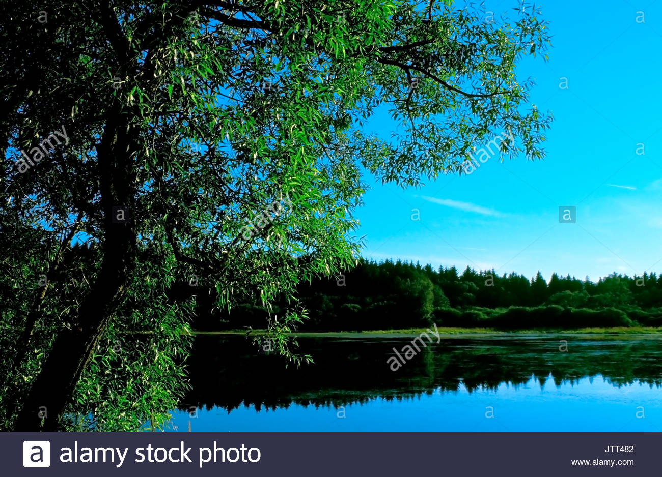 Lake in Waldviertel, Austria - Stock Image