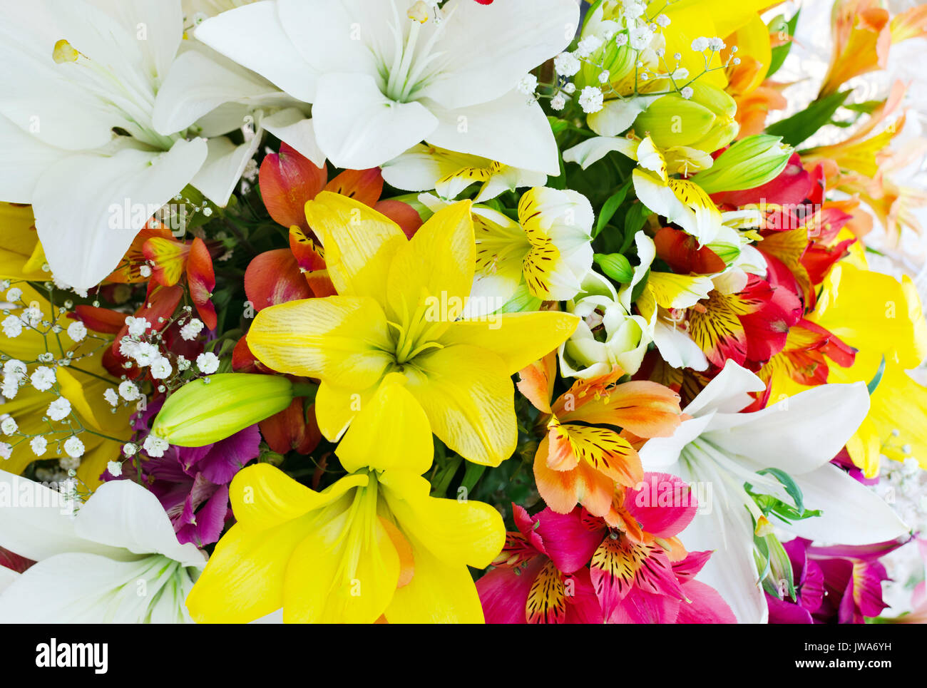 Pattern of different flowers in bouquet stock photo 153274341 alamy pattern of different flowers in bouquet izmirmasajfo