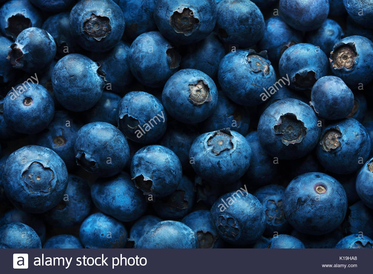 Blueberries background photographed from above full frame texture - Stock Image