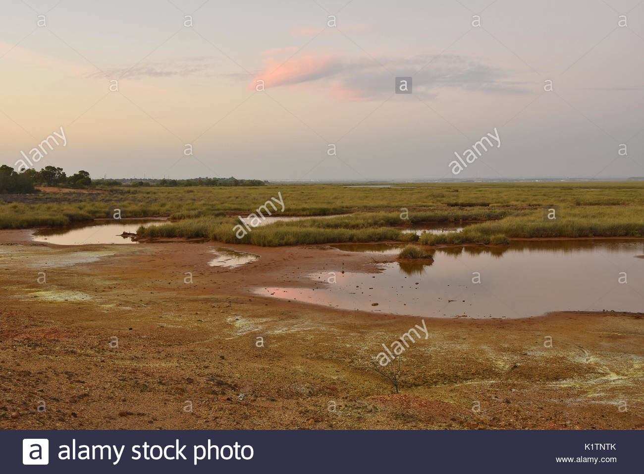 Chemical waste dumped in wetlands area near Huelva southern Spain Europe - Stock Image