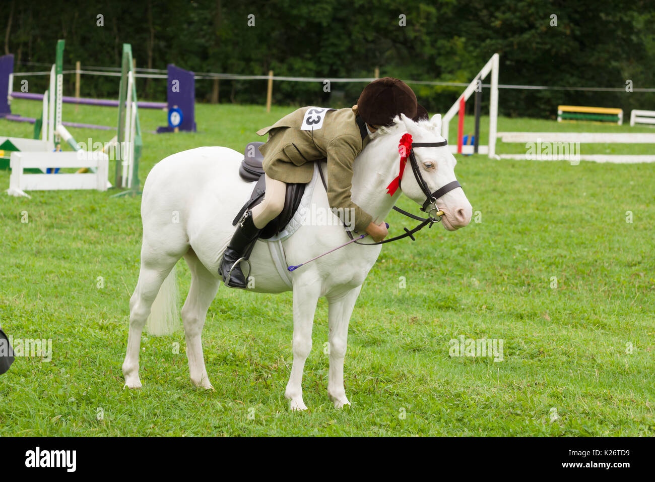 A young girl hugs her pony after winning first place in the horse and riders event at the annual Ceiriog Valley Stock Photo