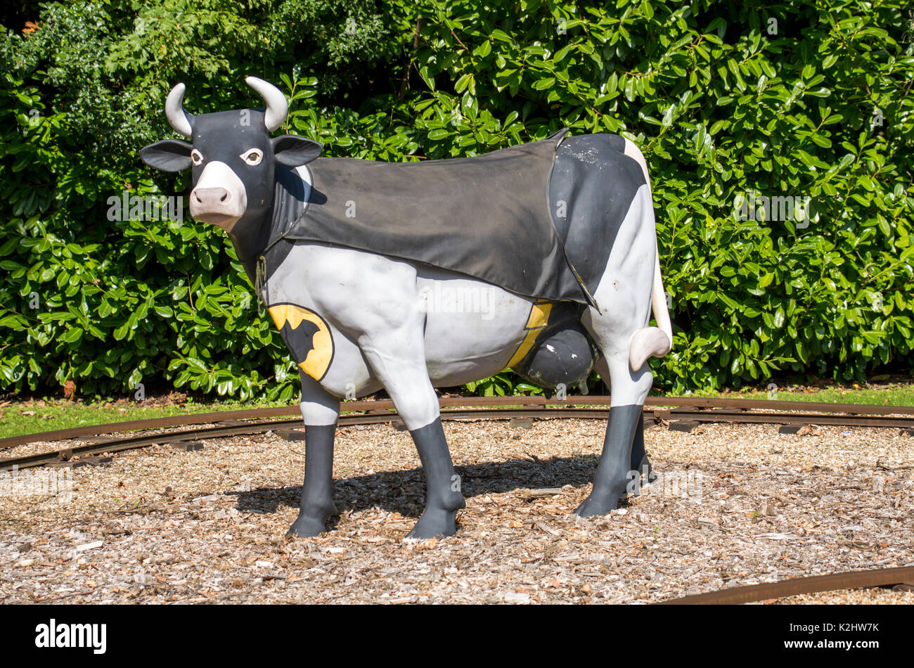 batman-cow-in-isle-of-wight-K2HW7K.jpg