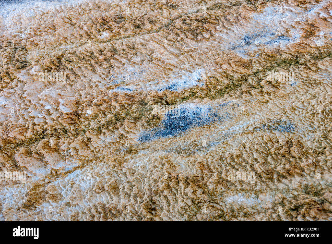 Shades and textures in the Mammoth Hot Springs area of Yellowstone National Park in winter - Stock Image
