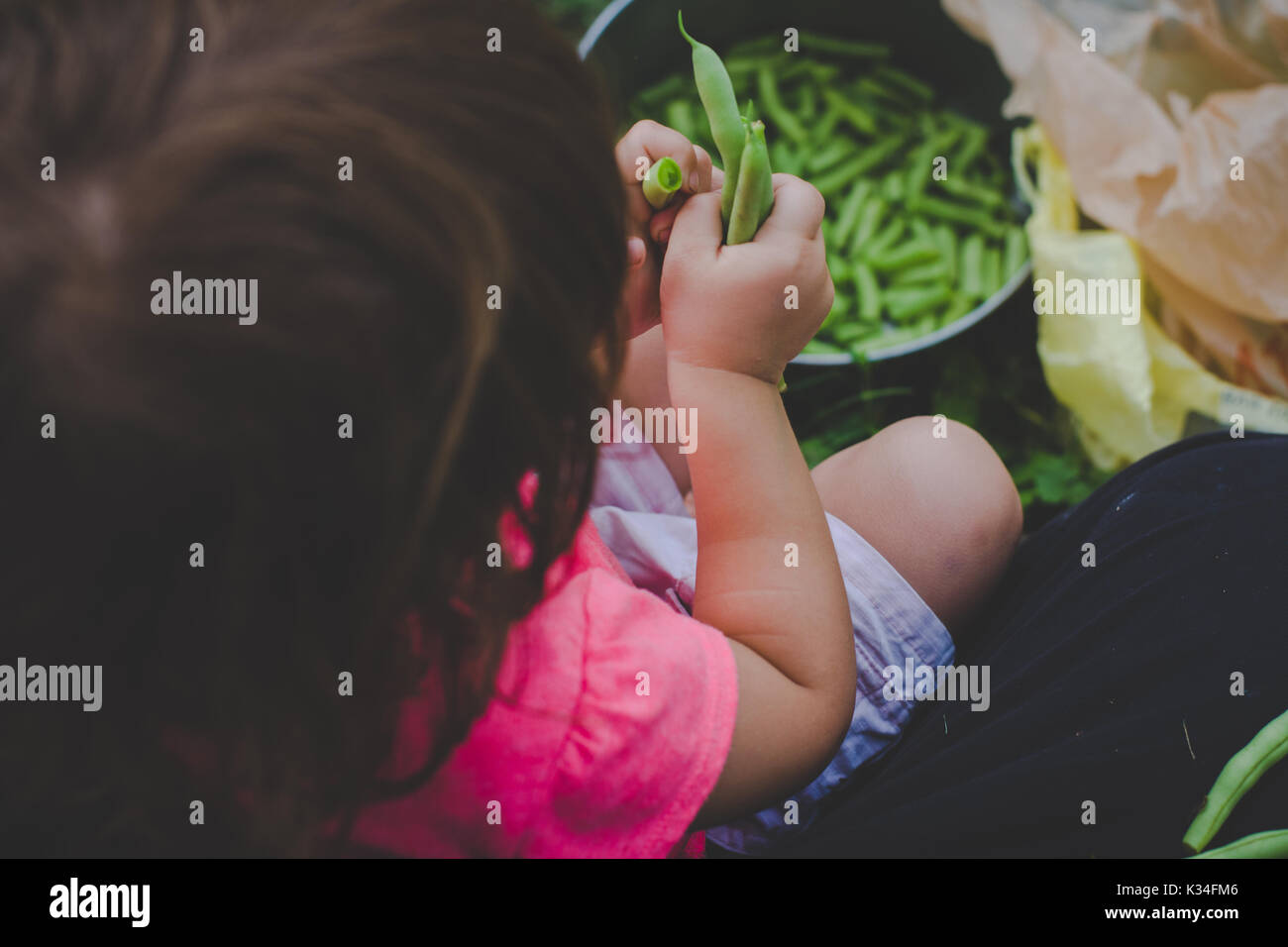 Young girl snaps fresh green beans. - Stock Image