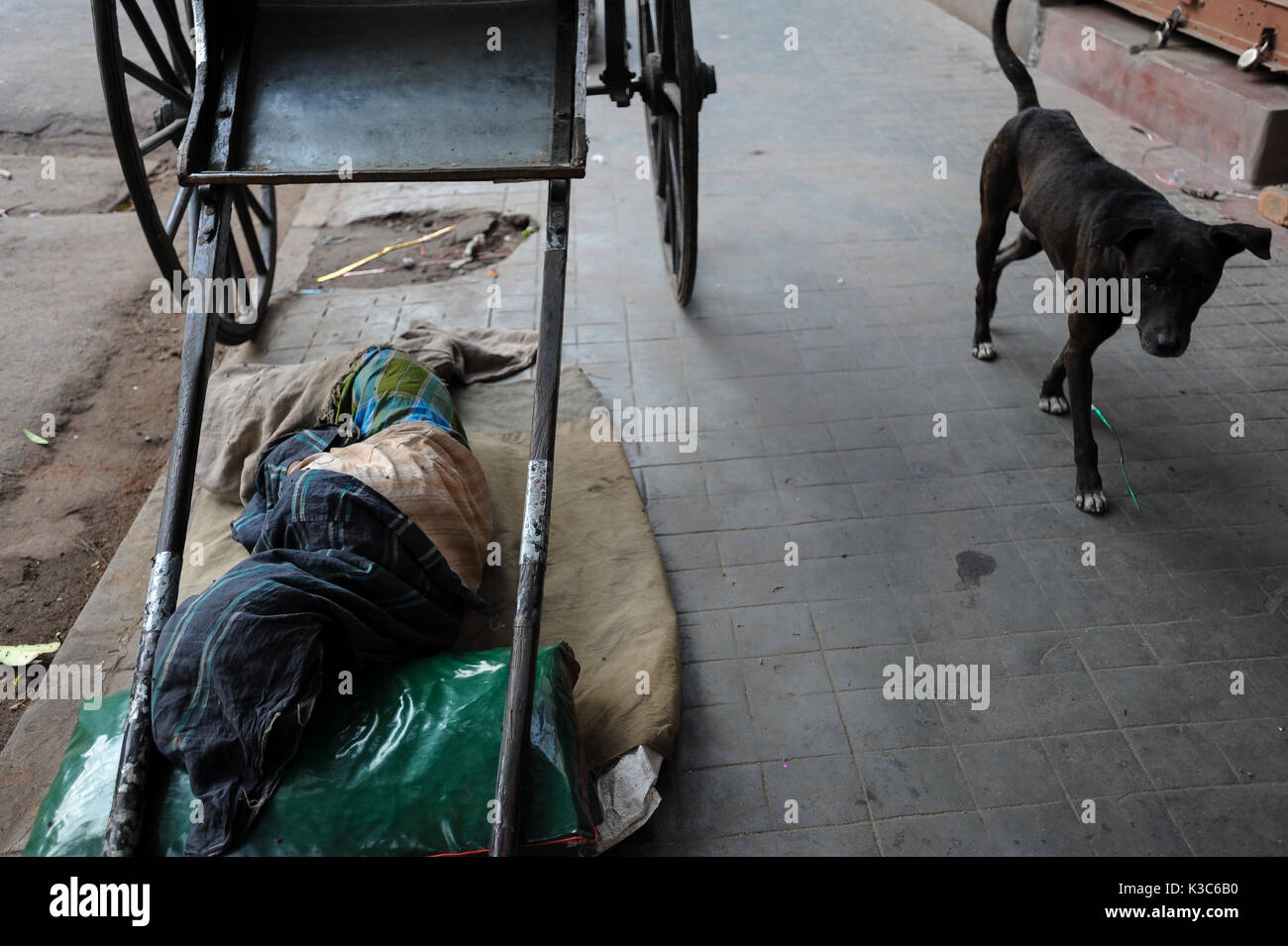 04.12.2011, Kolkata, West Bengal, India, Asia - A rickshaw puller sleeps next to his wooden rickshaw at a roadside - Stock Image