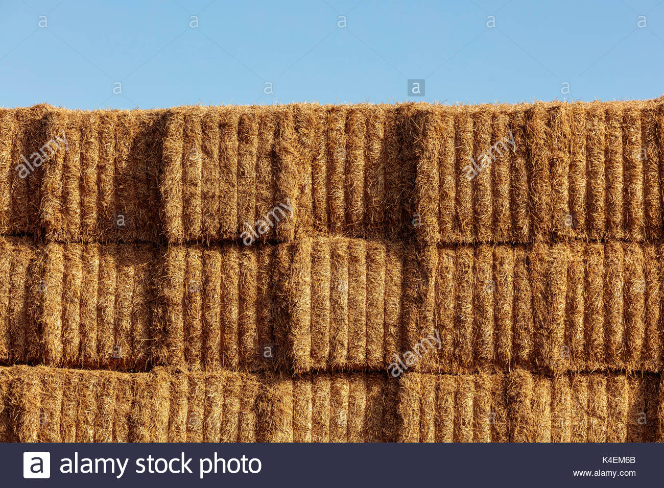 large square hay bale stacked pattern texture farm near Whitby Ontario Canada Stock Photo