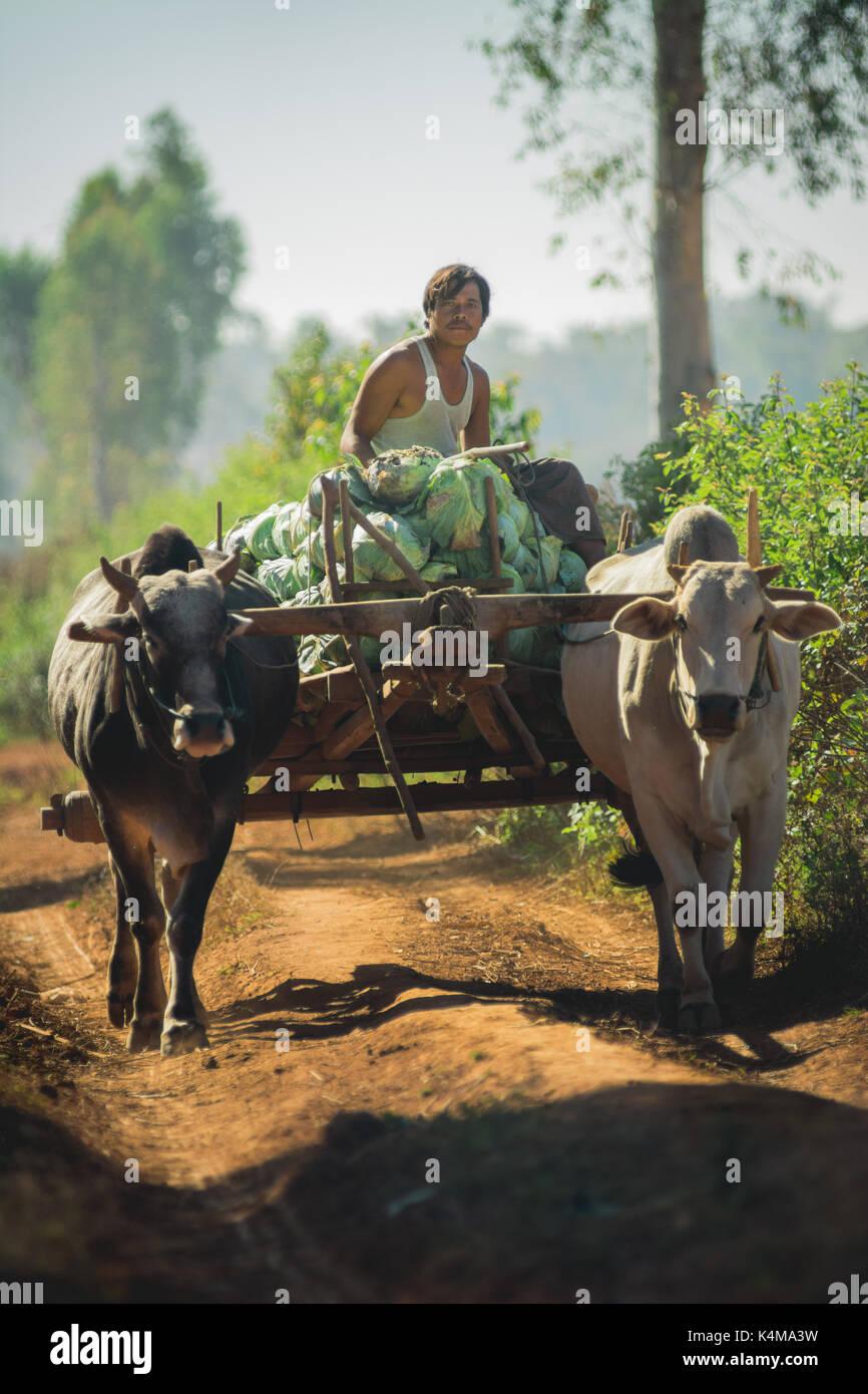 Shan State, Myanmar Dec. 26, 2013. Real life in rural Shan State, Myanmar, Burma. - Stock Image