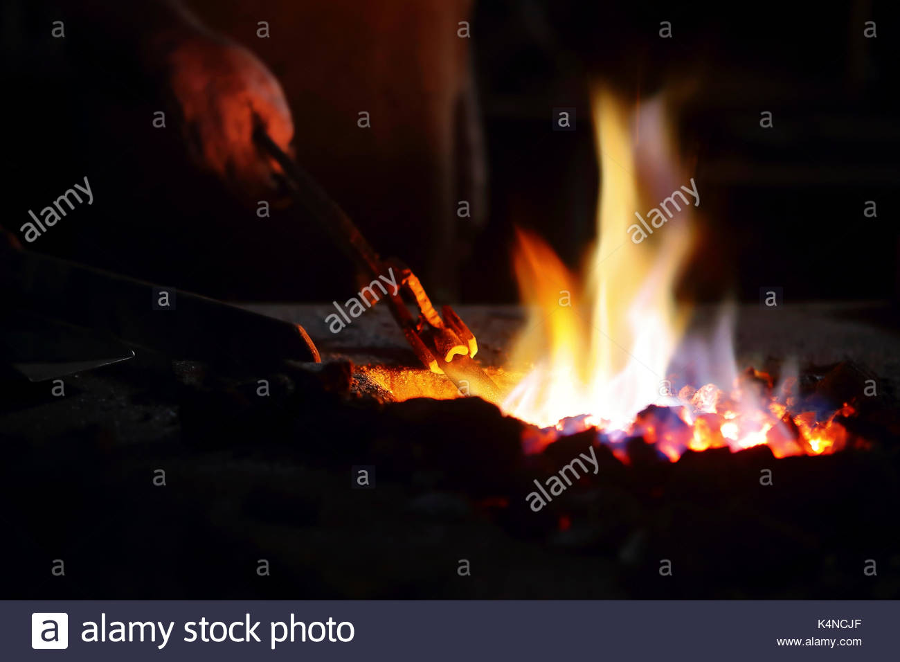 Close-up of  Blacksmith's hand and pincers heating molten iron in red hot burning coals and flames - Stock Image