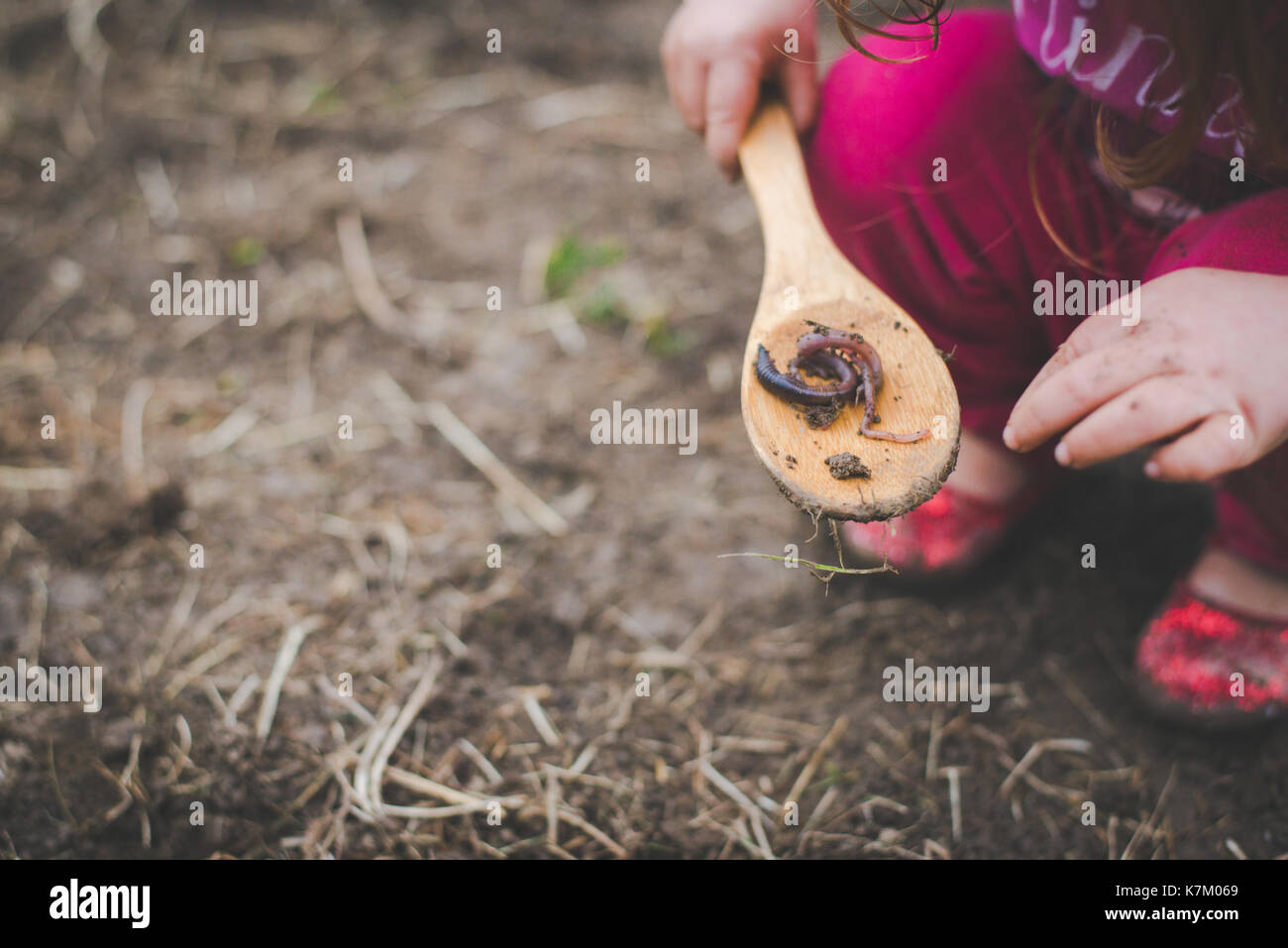 A child plays with a worm on a wooden spoon in a garden. - Stock Image