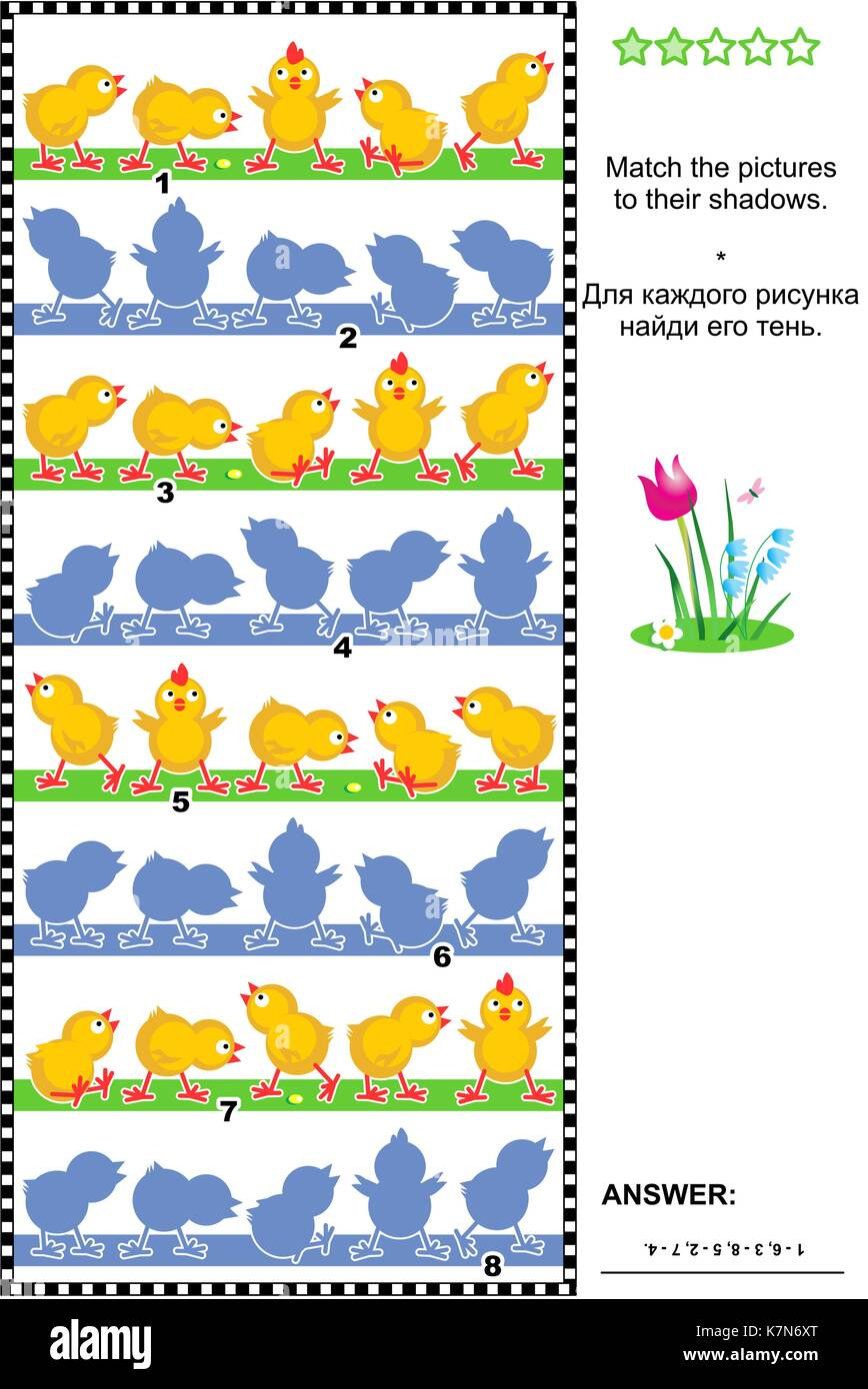 Visual puzzle or picture riddle: Match the pictures of chicks rows to their shadows. Answer included. - Stock Image
