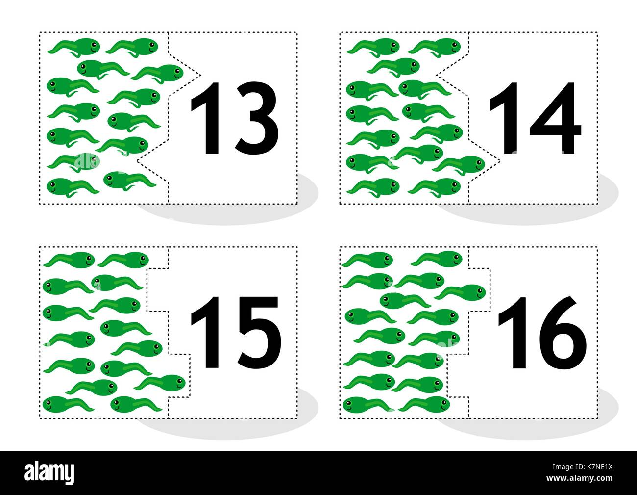 Learn counting 2-part puzzle cards to cut out and play, frog newts and tadpoles themed, numbers 13 - 16 - Stock Image