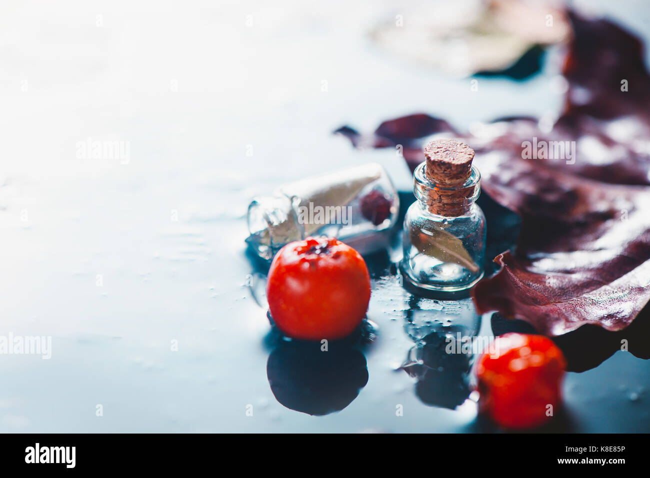 Rainy autumn still life with fallen eaves, red berries and water drops on a stone background - Stock Image