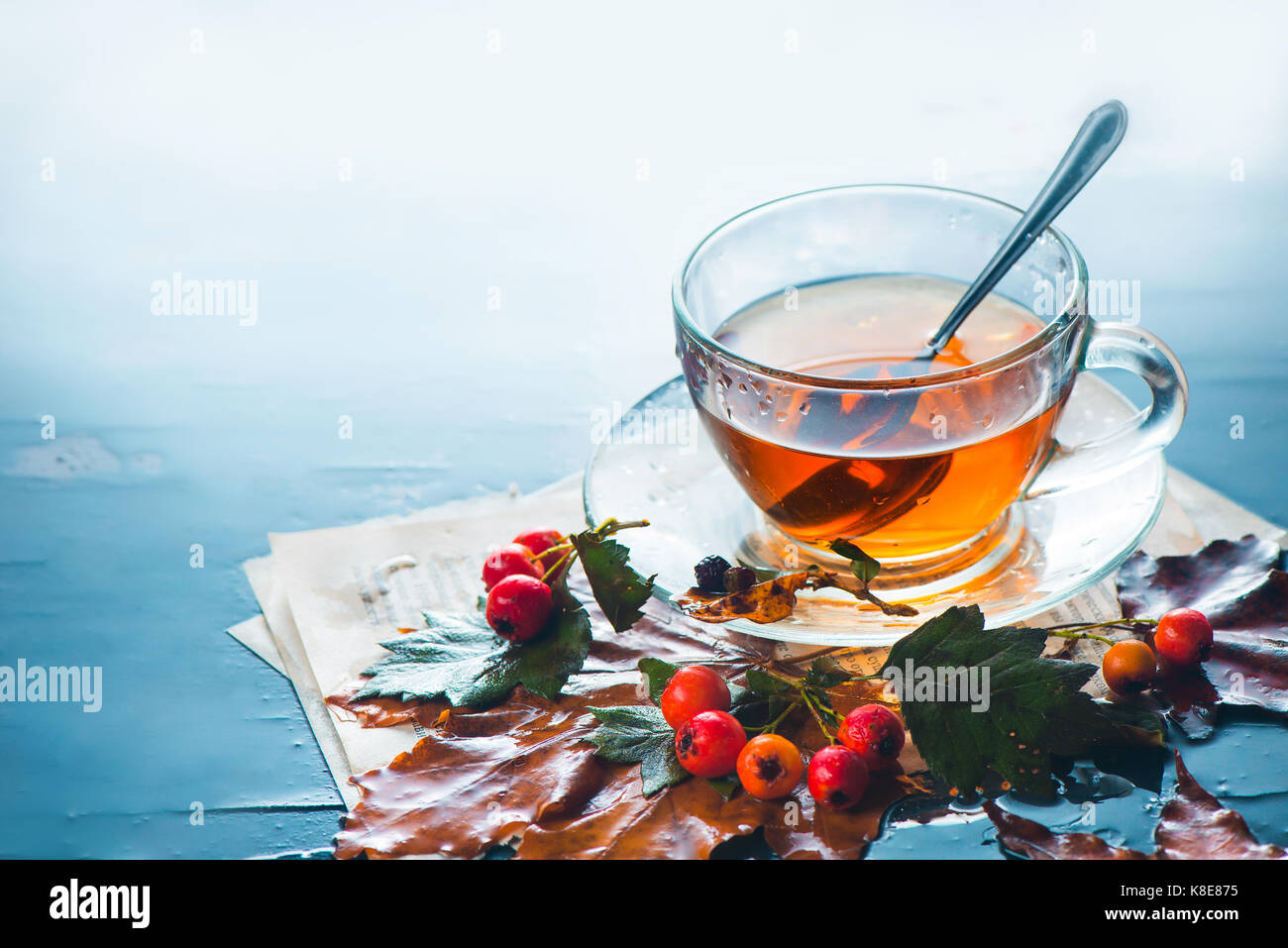 Glass tea cup in autumn still life with rain, leaves, book pages and berries on a wet background - Stock Image