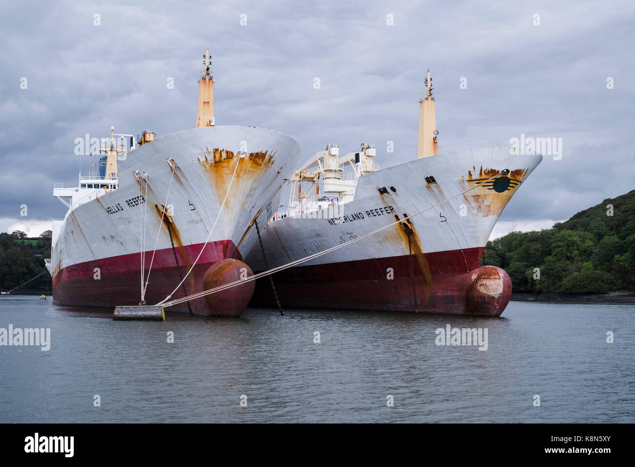 Reefer ships, refrigerated cargo ships used to transport perishable goods, laid up up in the Fal River, Falmouth, Stock Photo