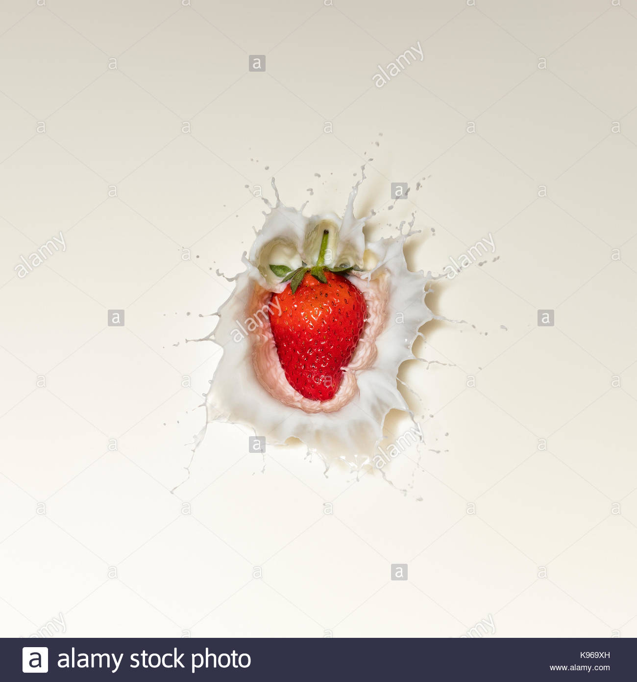 Fresh Red Strawberry fruit splash in white milk and viewed directly from above - Stock Image