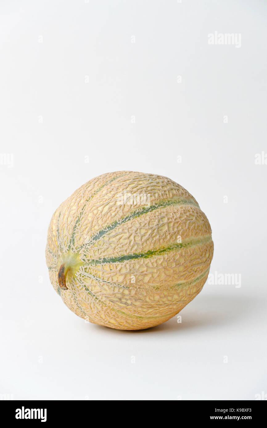 Cantaloupe Melon, Isolated  still life on white background - Stock Image