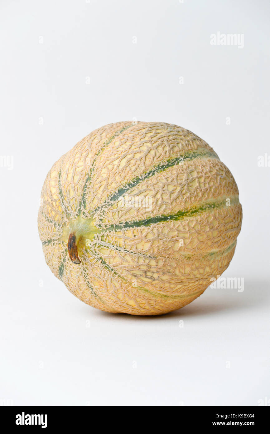 Cantaloupe Melon, still life on white background - Stock Image