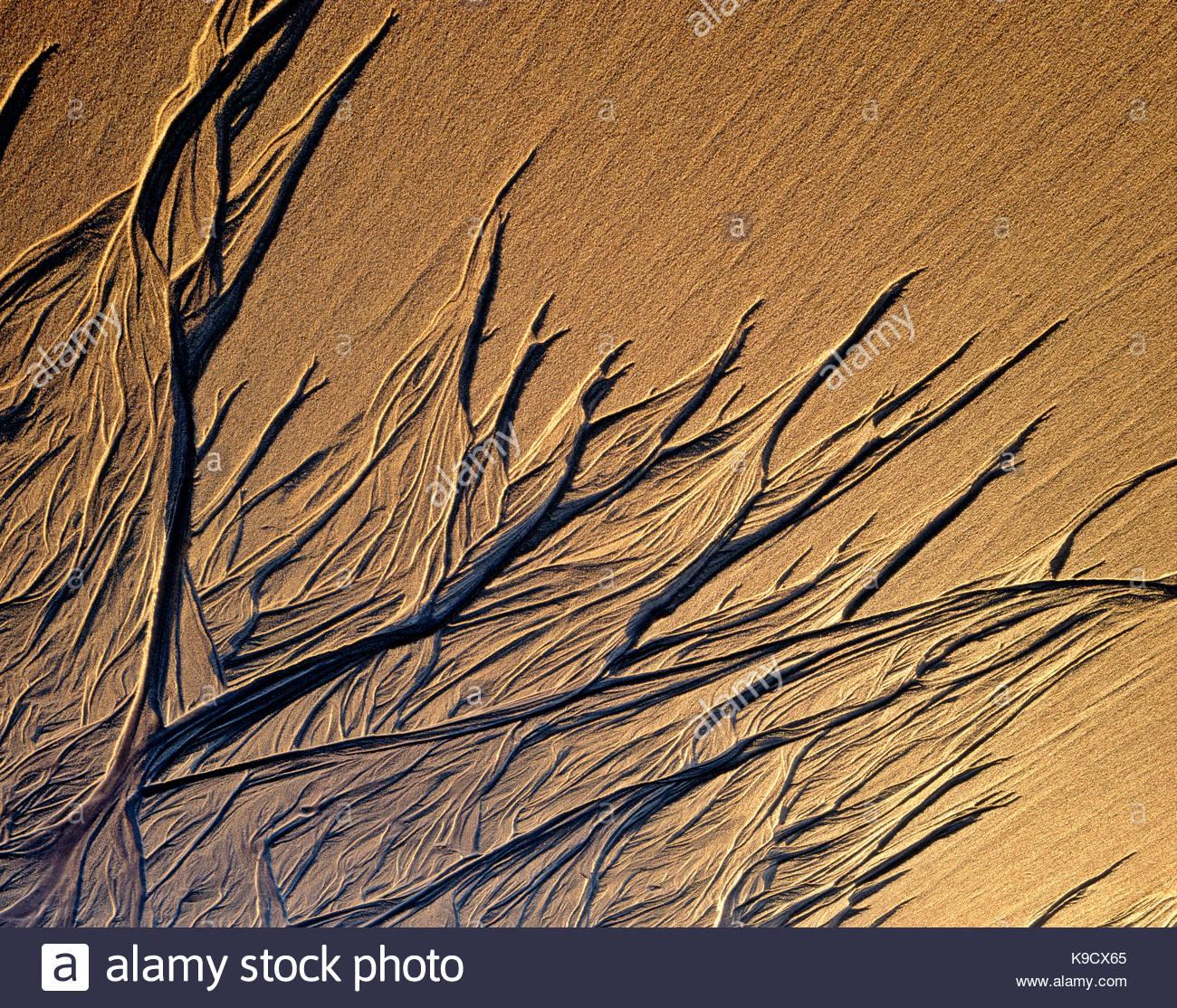 Last Sun on Sand Pattern,Phillip Burton Wilderness, Point Reyes National Seashore, California - Stock Image