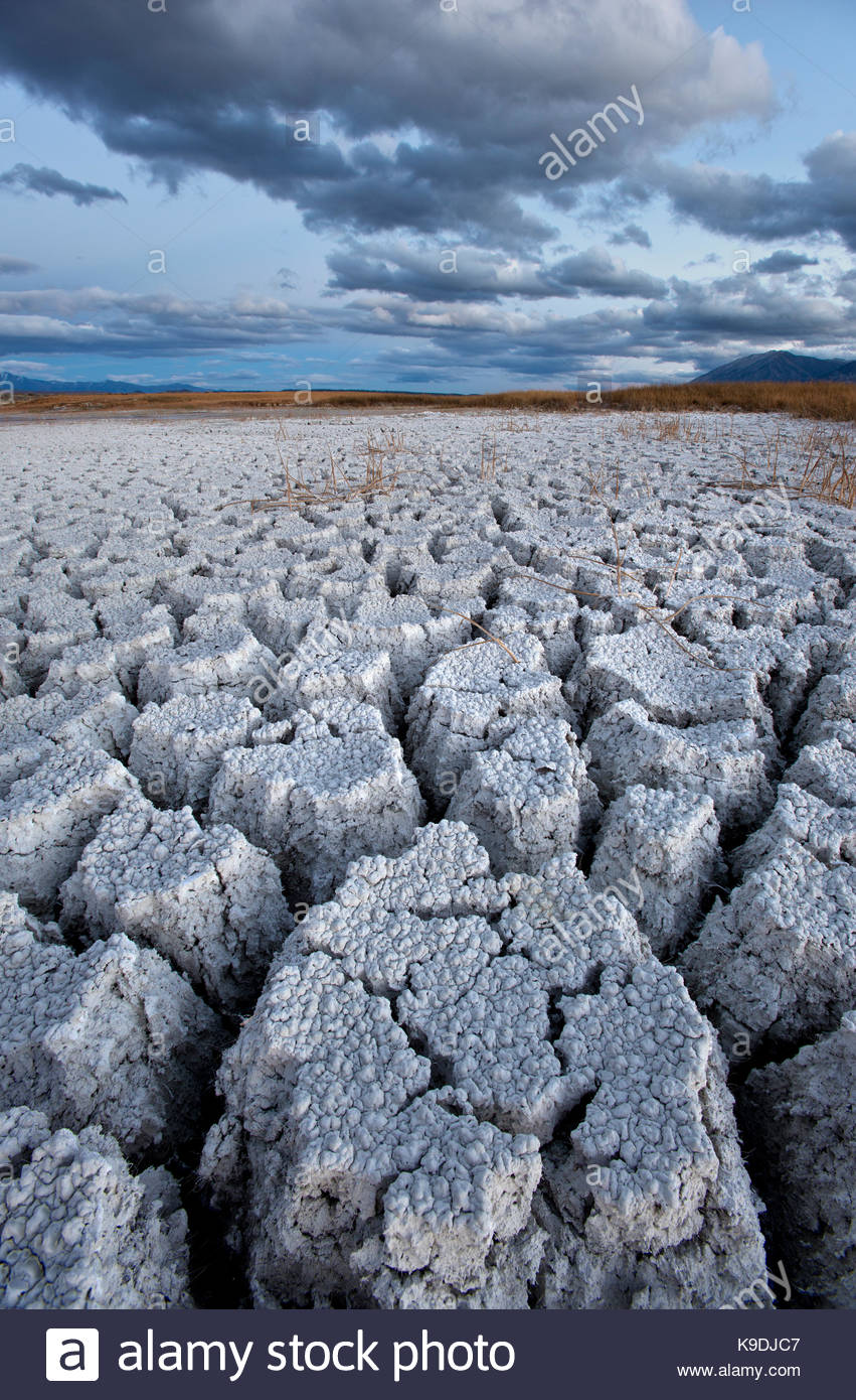 Cracked Alkali and Clouds, BLM Lands, Mono County, Caifornia - Stock Image