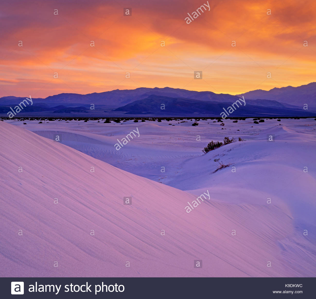 Saline Dunes at Dawn, Saline Valley Wilderness, Death Valley National Park, California - Stock Image