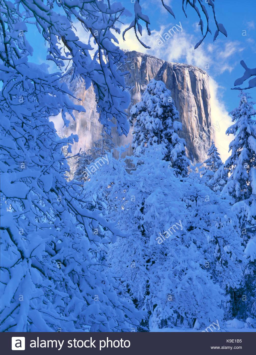 El Capitan after Snowstorm, Yosemite National Park, California - Stock Image