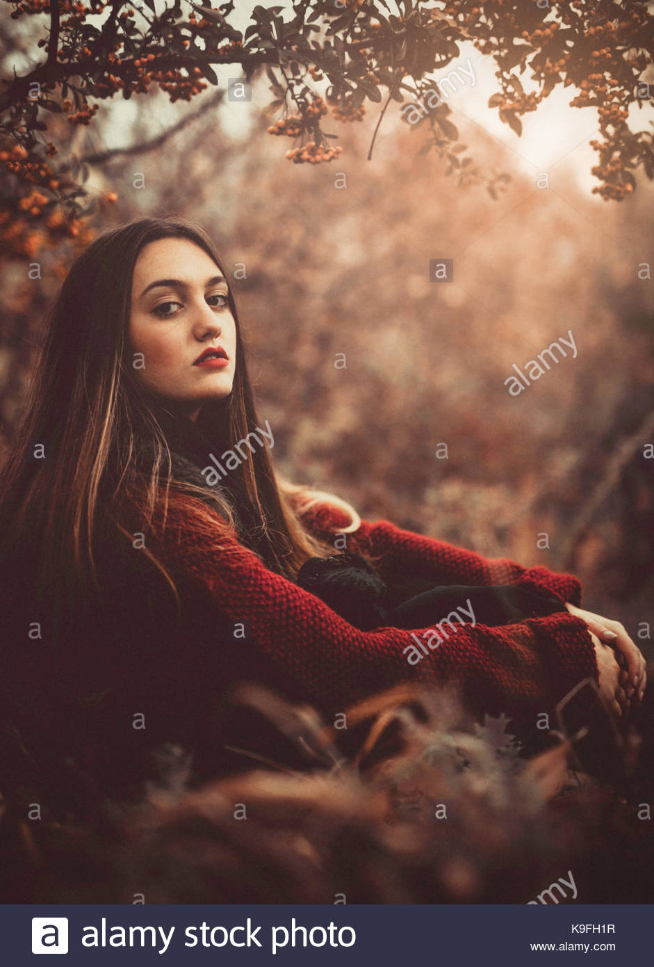 Portrait of a girl in the woods, sitting by a tree, sunset - Stock Image